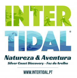 Intertidal – Silver Coast Discovery
