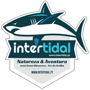 Intertidal - Natureza & Aventura, Foz do Arelho